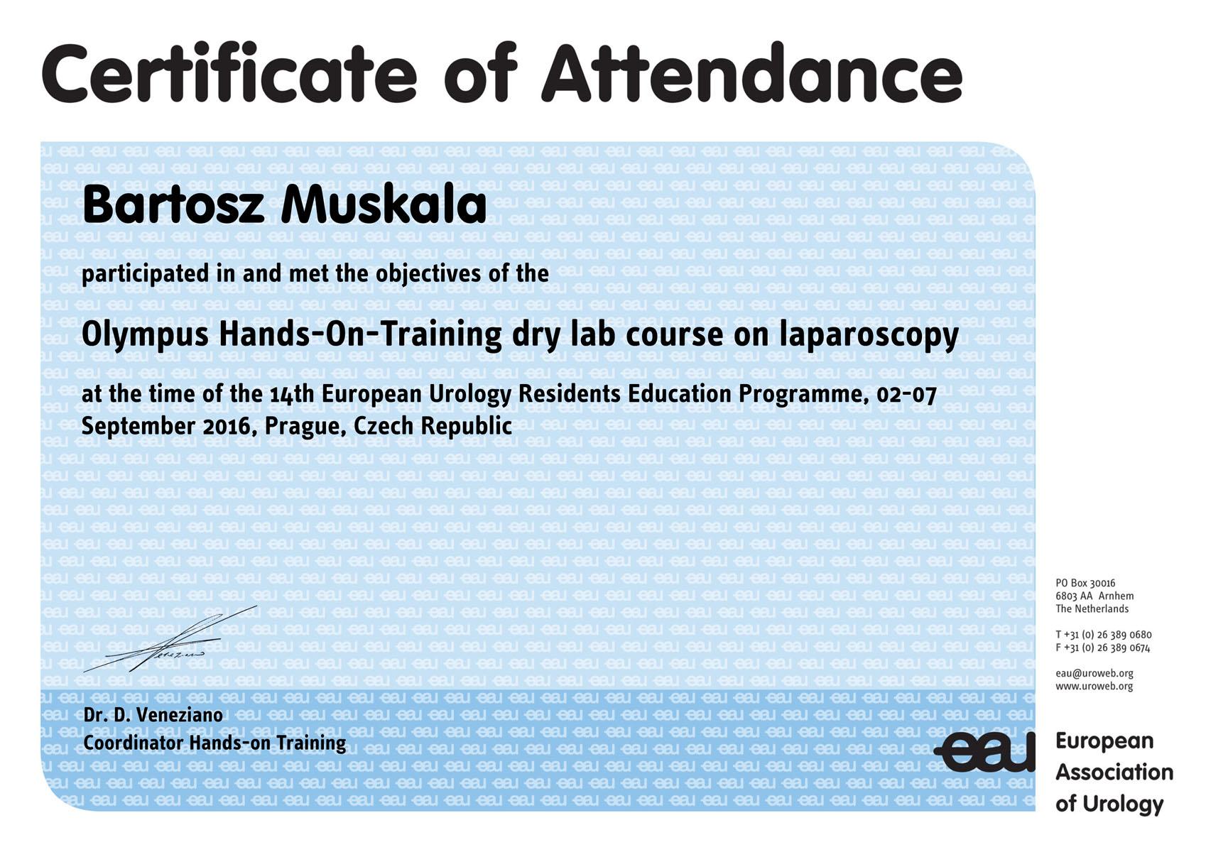 certificate_of_attendance_01